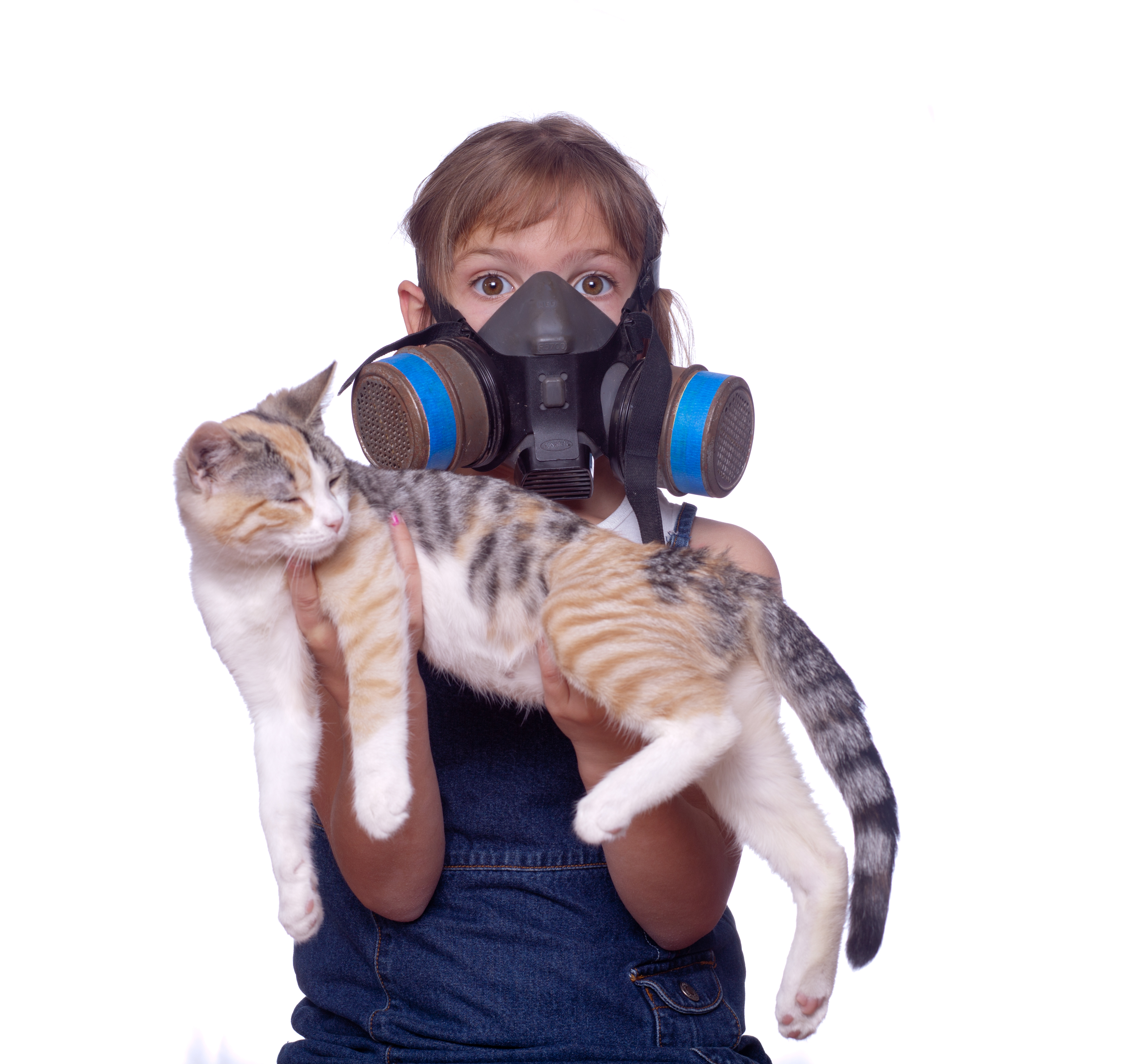 Air Quality inspections are vital to your family
